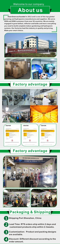 중국 공장 1000W HPS 수경 성장 Alanod 반사경 전자 컨트롤러 밸러스트 온실
