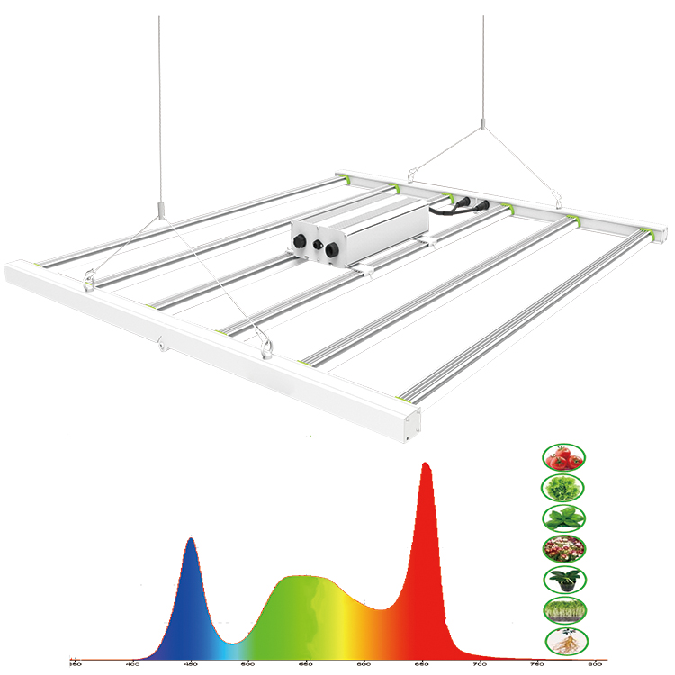 lm301 quantum 600W led modular grow light full spectrum indoor systems hydroponic home vertical garden indoor greenhouse