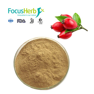 Water soluble Rose Hip Extract