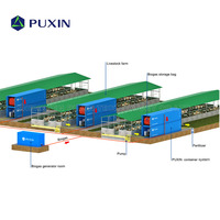 PUXIN 20FT Medium Size Complete Bio Gas Plant System to Get Biogas Electricity and Fertilizer from Livestock manure