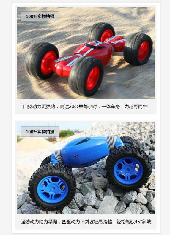 Double Sided 2.4GHz Stunt Climbing Car RC Rock Crawler For Sale