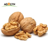 AGOLYN Top Grade Thin-skin Raw Walnuts with shell