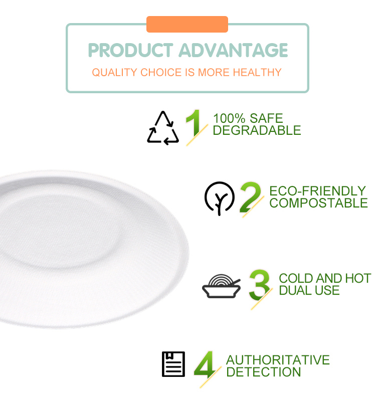 New Style Product Super White 3 Compartment sugarcane Bagasse plate