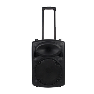 High Quality Dj Rechargeable Portable Trolley Speaker With Usb