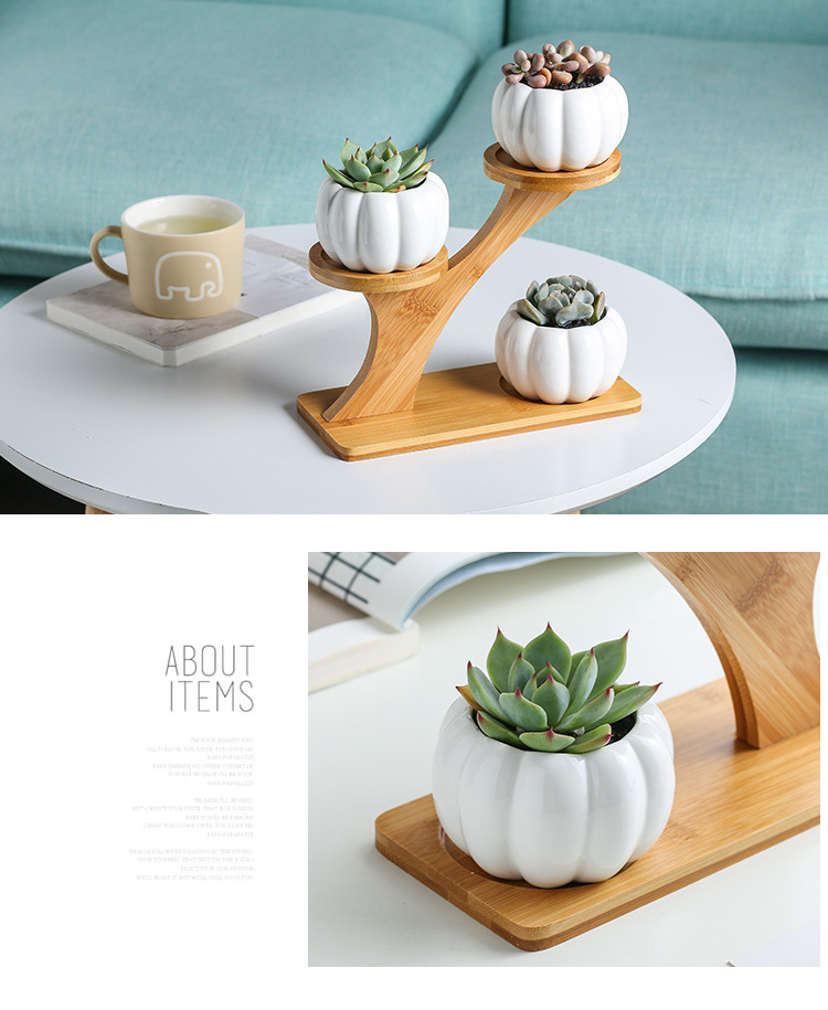 Simple white creative pumpkin shape flower pot succulent ceramic pot with bamboo stand wholesale