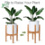 8'' to 12''  Flower Pot  Solid Bamboo Wood Adjustable Century Plant Stand For Indoor Outdoor