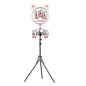 Professional Audio Video lighting 60W 20 Inch makeup studio photography led ring light with stand