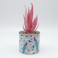 Hot Selling Peacock Design Flower Pots Custom Picture Plastic Plant Tin Paper Mini Succulent Plant Pot