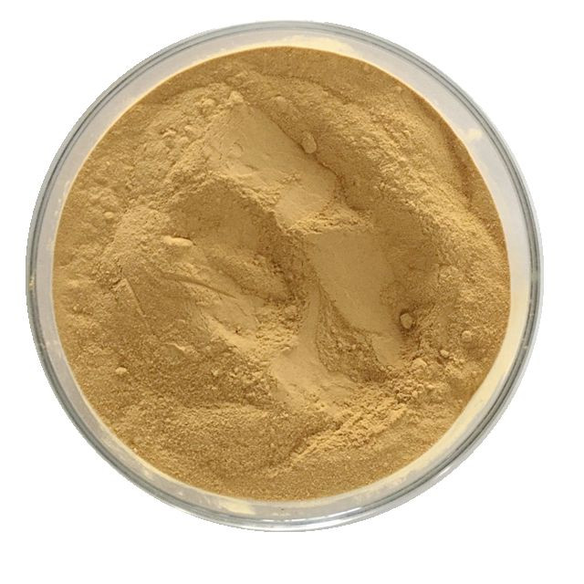 Nature Anti-inflammatory Hoodia Cactus Extract Powder