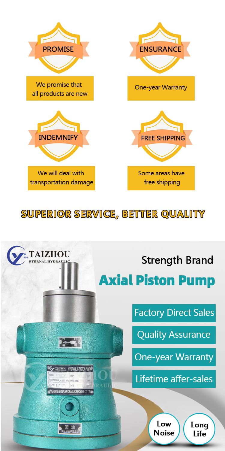 Cast Iron Hydraulic Oil Marine Piston Pump, Cy Cy14 1B Bomba Hidraulica Axial Flow Pump
