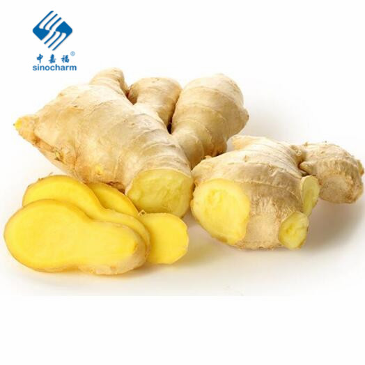 Fresh Vegetables from China Washed Ginger Fresh Ginger