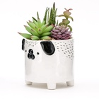 Pot Best Selling 3d Animal Instagram Ceramic Mini Succulent Plant Pot Customized