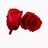 Wholesale Preserved Roses 3-4cm red Rose Flower Head