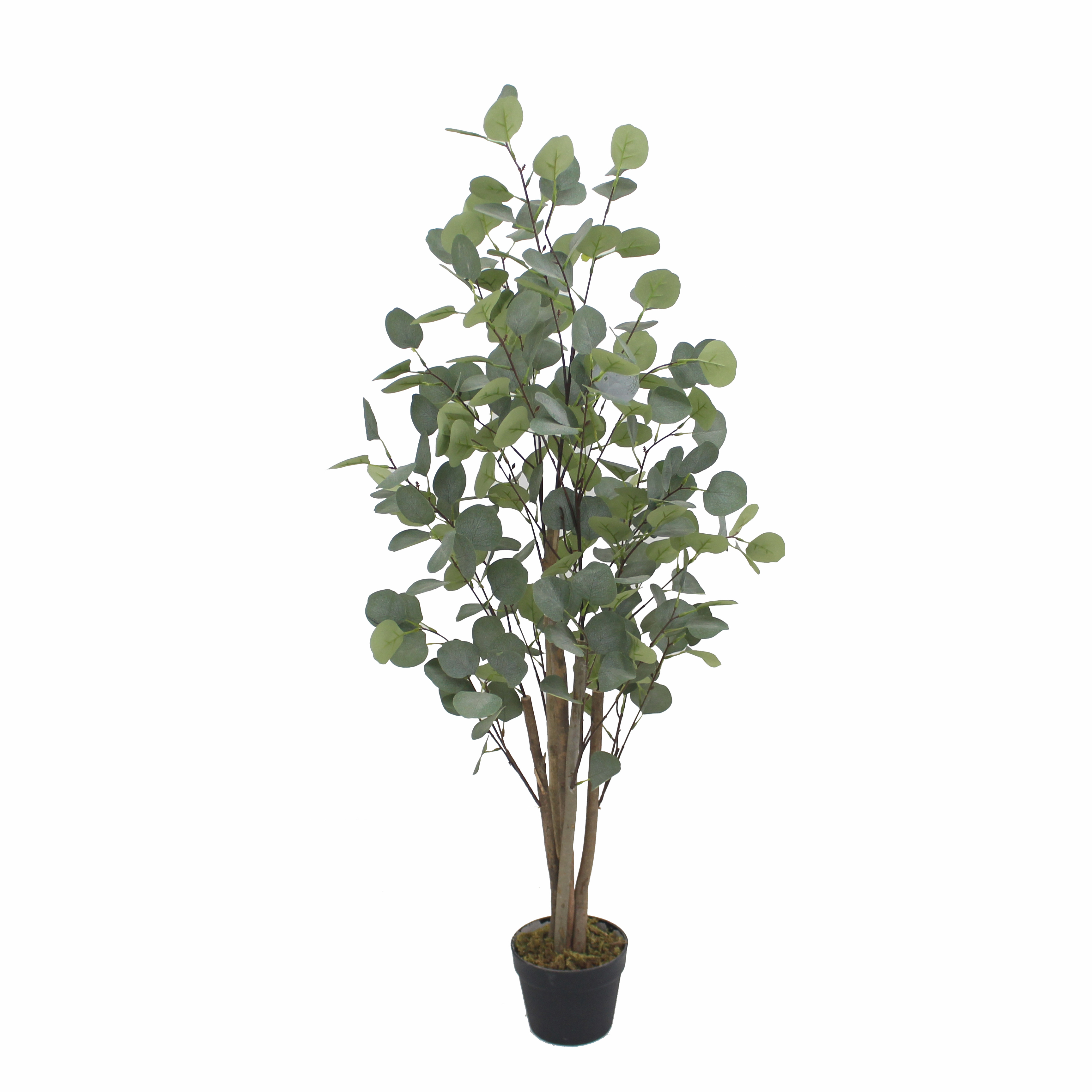 Amazon hot sale artificial <strong>trees</strong> and plants bonsai plants for <strong>house</strong> decoration