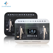 Bio-elektrische <span class=keywords><strong>DDS</strong></span> full body massage machine gemaakt in China