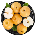 China Pears Pear 2020 New China Fresh Pears Fruit