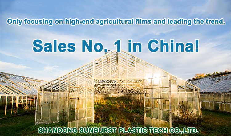 High Quality Agricultural Plastic Punch Hole Mulch Film