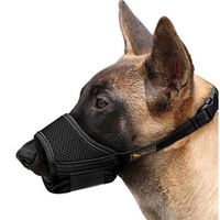 Hot Selling Muzzles For Dogs To Prevent Chewing