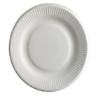 Eco-friendly Biodegradable Disposable Plate