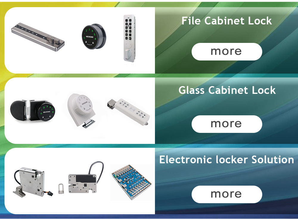 fingerprint biometric cabinet lock