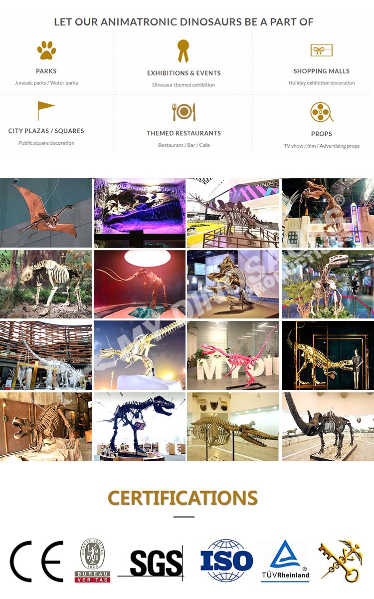 Benim Dino bir müze kaliteli hayvan at iskelet modeli
