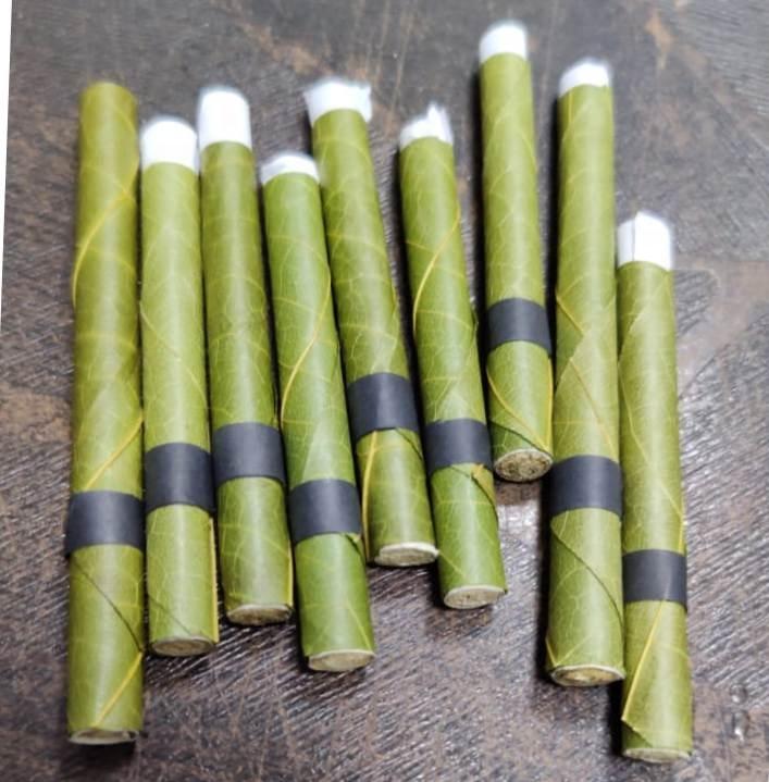 Cordia Leaf Rolls.jpg