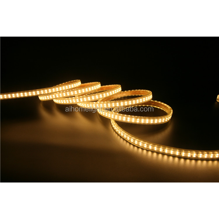 Low Price Custom 220V/110V Double Row Color Changing Led Neon Rope Light Outdoor Ip65 180Led/M
