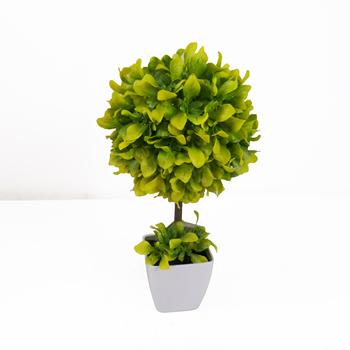 Mo Phỏng Cao Bảng Centerpieces Nhan Tạo Chậu Mini Bonsai Tree Cho Trang Tri Nội Thất Buy Cay Cảnh Gỗ Hoang Dương Cay Cảnh Cay Nhan Tạo Bonsai Trong Chậu Product On Alibaba Com