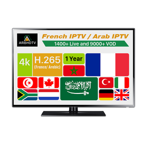 Wholesale ARBHDTV IPTV Reseller Panel Account Subscription 1 Year Live  Channels VOD IP TV Providers