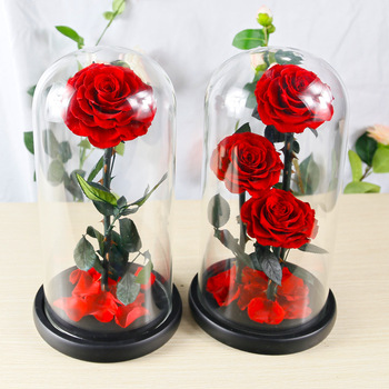 10cm Red fresh Preserved Rose in Glass Dome as Gift and Sitting Room Decoration