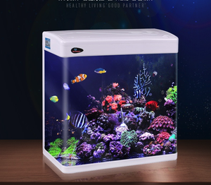 Minjiang hot selling fiberglass fish tank aquarium with high quality