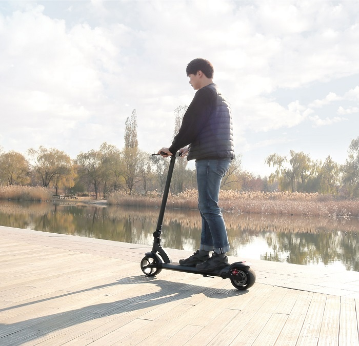1000w Light weight Folding Powerful Adult 2 wheels Electric Scooter