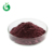 Pure Grape Seed Extract 95% Proanthocyanidine