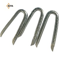 china supplier galvanized netting fencing staple u type nail