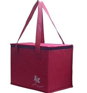 OEM Lunch Disposable Dry Wine Bag Cooler