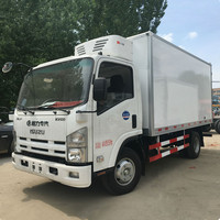 Japanese small freezer body truck with Thermo King cold unit
