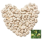 Fairy [ Seeds ] Seed White Magic Bean Message Bean Seeds With Logo As Gift Promotion
