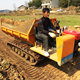 3ton capacity Woodland crawler dumper truck for transporting