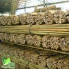 High Quality Garden Green Bamboo Poles/Canes/Stakes/Stick