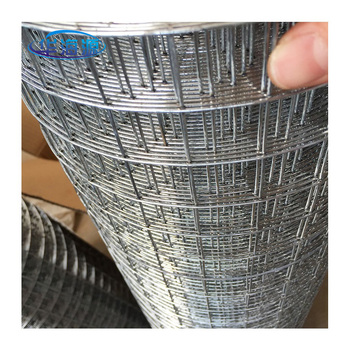 export to Pakistan welded wire mesh galvanized welded mesh