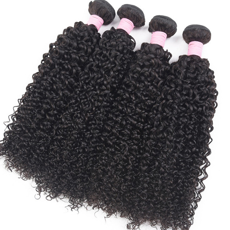Usexy Wholesale Virgin Cuticle Aligned Hair Vendors Raw Indian Hair Bundle Curly 100% Human Hair Extension, N/a