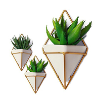 New style ceramic hanging planter pot for wall decor,planter for succulent plants,air plan artificial plants