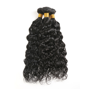 Wholesale New Dream Virgin Brazilian Hair Extension Human Hair Water Curly Cuticle Aligned Mink Brazilian Virgin Hair Extension