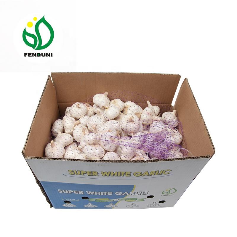natural garlic with good quality normal white garlic 10kg/carton in china to Brasil
