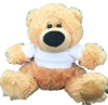 Manufacture directory teddy bears with a poly t-shirt for printing for gift