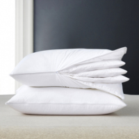 2019 Wholesale cheap duck feather down insert hotel bed pillow