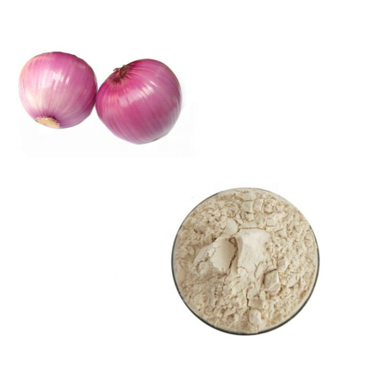Dry Spring Extract Natural Onion Powder Free Sample