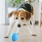 Wicked Ball The new smart pet toy automatic dog ball the cats and dogs like Wickedball