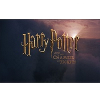 Wholesale Custom Popular Printing Polyester Any Size Harry Potter Banner For Outdoor