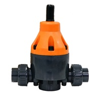 Hot Sale UPVC DN15 True Union Safety Back Pressure Valve For Dosing Pump